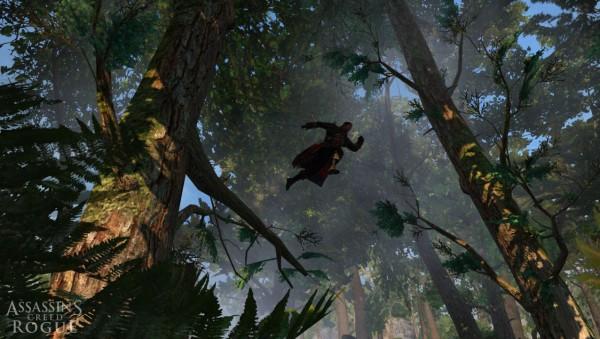Assassin's Creed Rogue screenshot